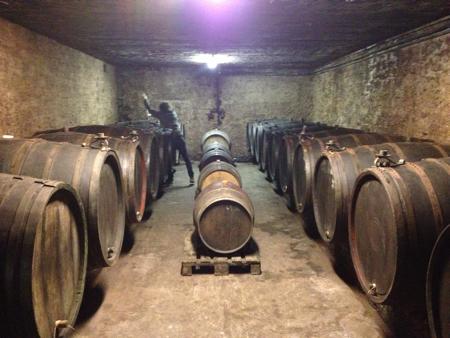 cellar_falkenstein