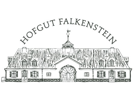 falkenstein_new_logo