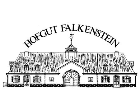logo_falkenstein