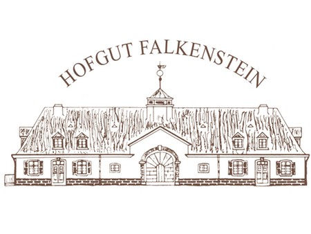 new_logo_falkenstein