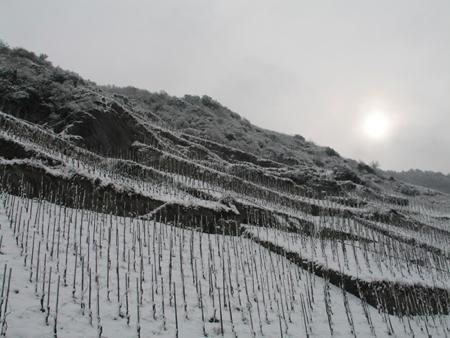 ellergrub_snow_weiser_kuenstler